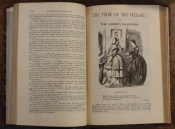 Image for Pride of The Village; or, the Farmer's Daughters.