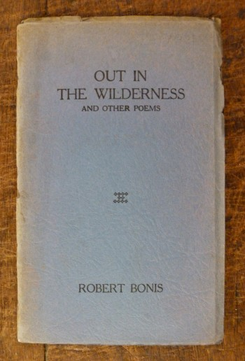 Image for Out in the Wilderness and Other Poems