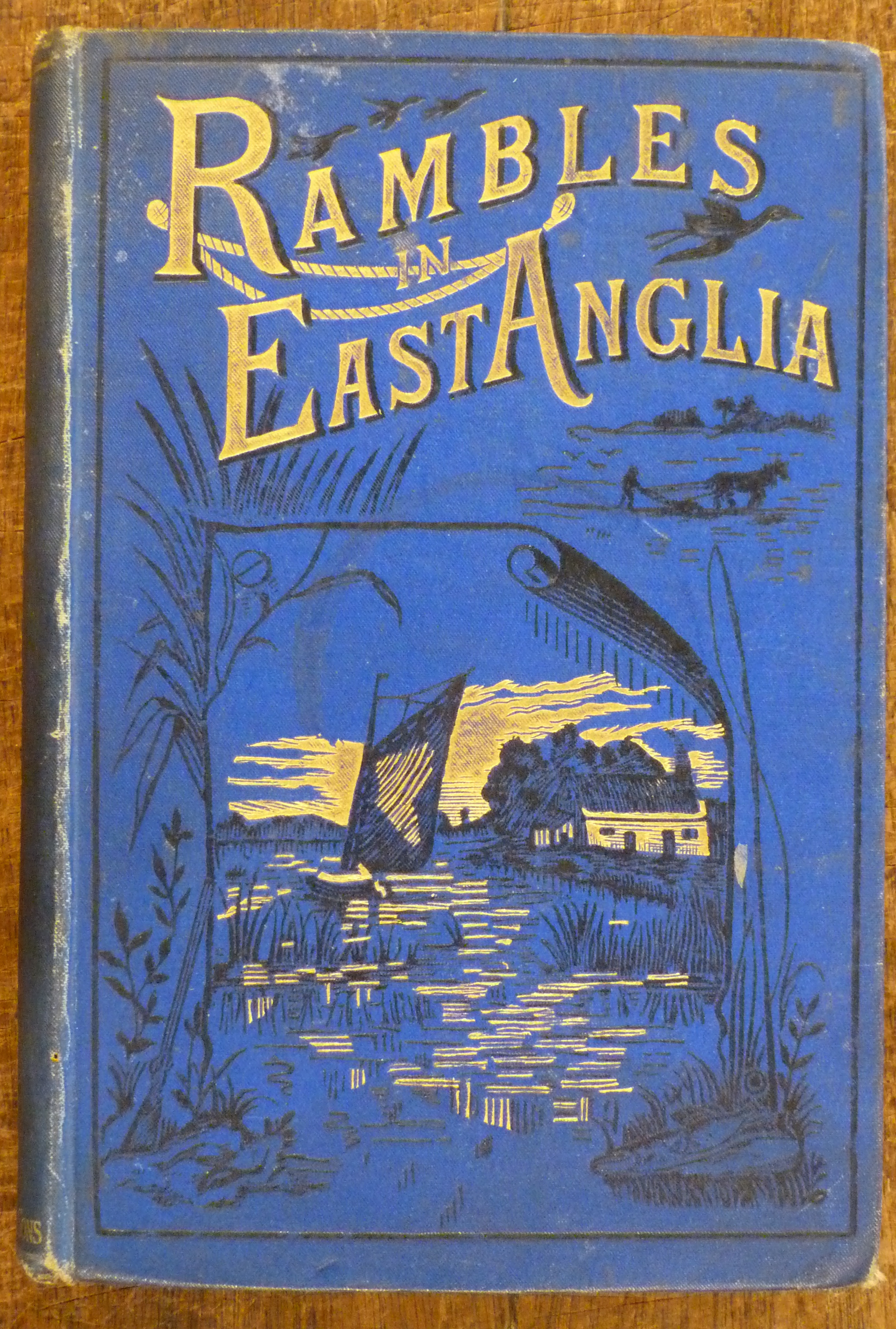 Image for Rambles in East Anglia or Holiday Excursions Among the Rivers and Broads