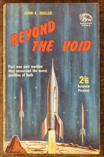 Image for Beyond the Void